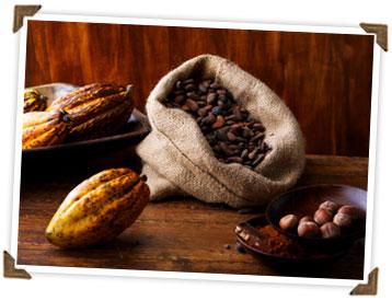 cacao beans.jpg